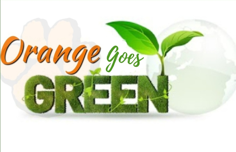 Amna created this unique logo to remind South students that their actions affect the environment.