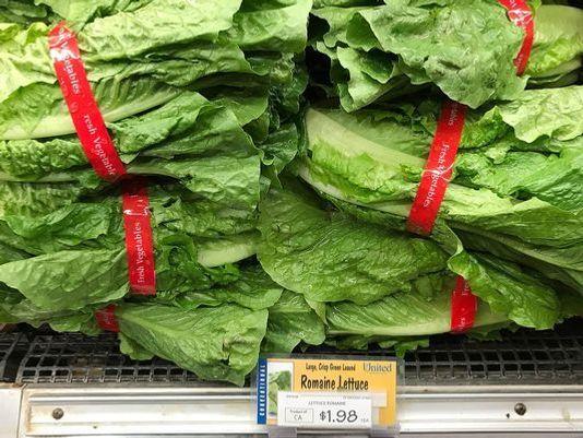 Lettuce Know: Responses to the E Coli Outbreak